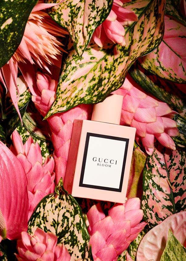 Gucci_CleanColor57669
